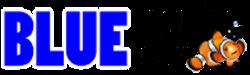 โรงเรียนสอนดำน้ำ ทริปดำน้้ำจังหวัดภูเก็ต-Blue Marine Divers