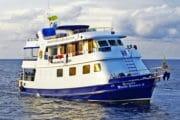シミラン諸島 ダイビング クルーズ