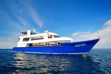 シミラン諸島 ダイビングツアー
