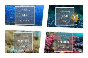 andaman Fish