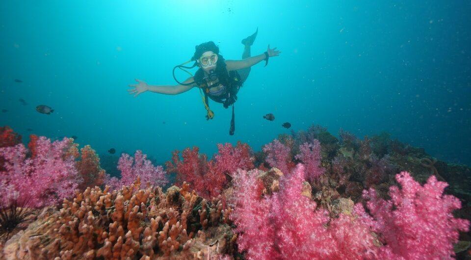 プーケット ダイビング ピピ島